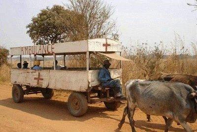 ambulancia tartaruga