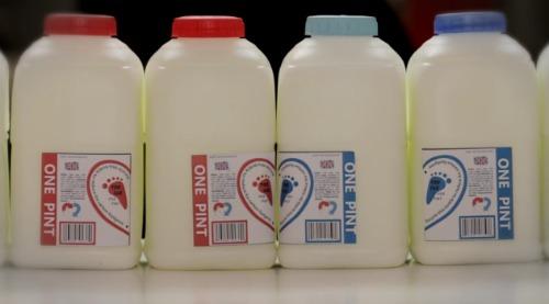 Milk's Love Story