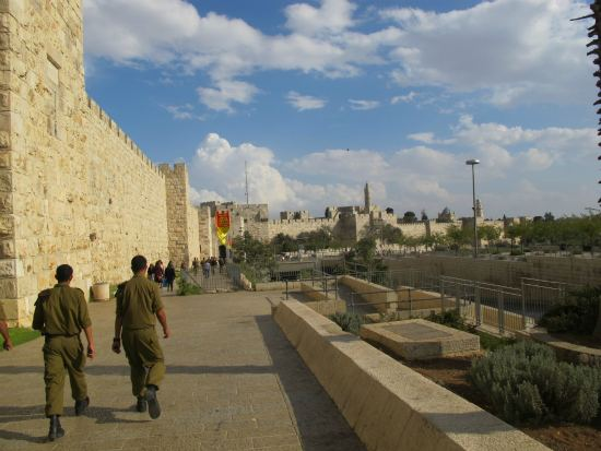 Movimento Sionista Israel